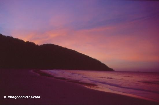 Posta de sol a Cape Tribulation Beach
