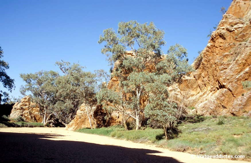Emily Gap (East MacDonnell Ranges)