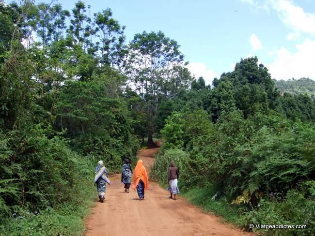 Tanzania y Zanzíbar: guía y relato de viaje por libre
